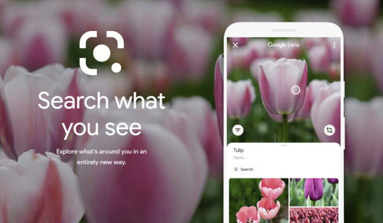What is Google Lens and How to use it?